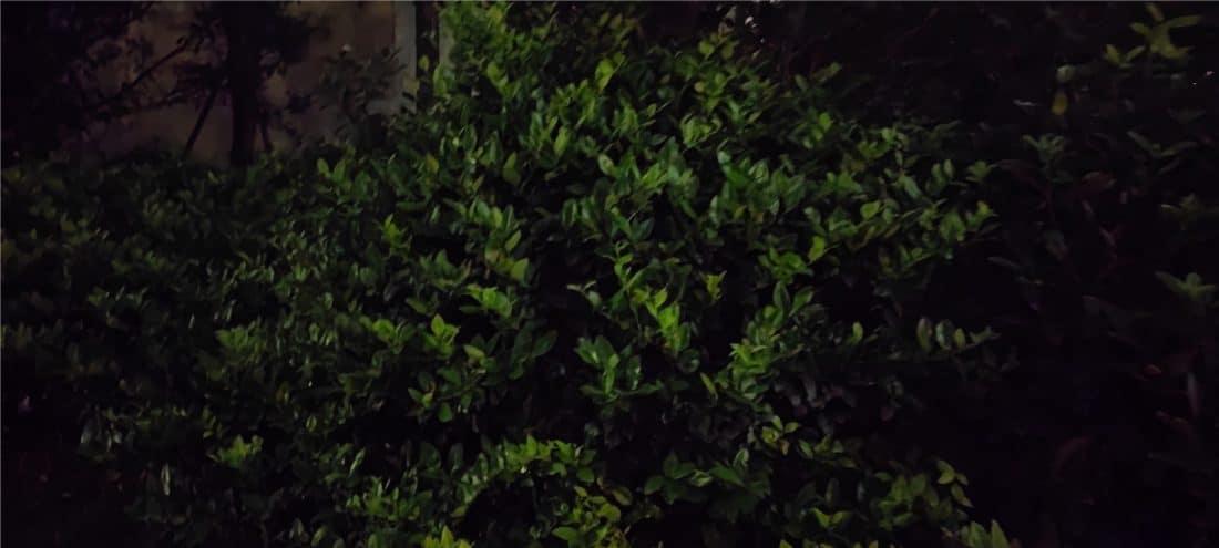 ночное фото камеры Mi Mix 4